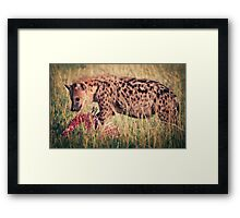 Hyena Lunch Framed Print