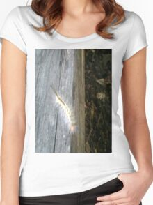 Hairy Caterpillar 2 Women's Fitted Scoop T-Shirt