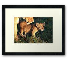 Damp from the Dew Framed Print