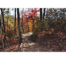 Trail Top on Sky Lift Slade Kentucky Photographic Print