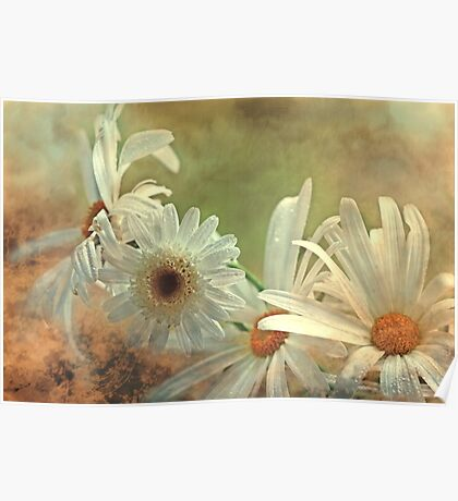 """""""Simply Daisies...."""" Poster"""