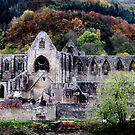 Autumn At Tintern Abbey  by Samantha Higgs