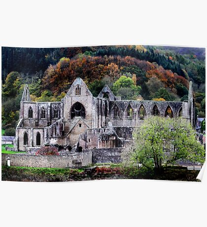 Autumn At Tintern Abbey  Poster