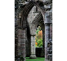 Autumn View - Tintern Abbey Photographic Print