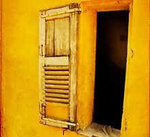 yellow Grasse by Sonia de Macedo-Stewart
