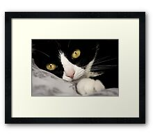 life's hard Framed Print