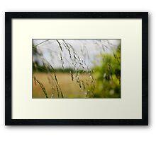 Oh.. l'été et ses souvenirs 3 Framed Print