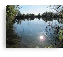 Sunlight in the water. Canvas Print