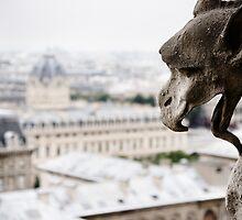 Paris003 by RicharD Murphy