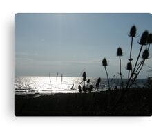 Sea view .. Canvas Print