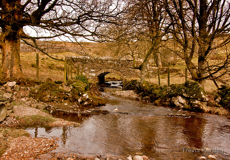 By a Babbling Brook by Trevor Kersley