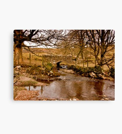 By a Babbling Brook Canvas Print