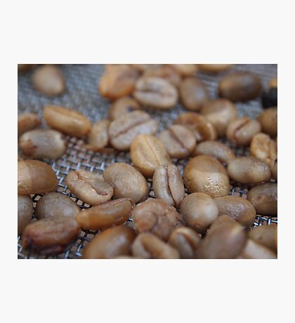 The Golden Beans Photographic Print