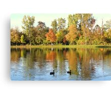 Fall Colors Reflecting In Pond With Ducks Canvas Print