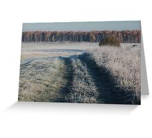 First frost and wild pathway in grassland Greeting Card