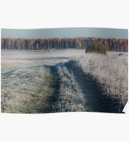 First frost and wild pathway in grassland Poster