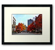 Autumn in Raleigh Framed Print