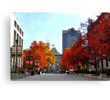 Autumn in Raleigh Canvas Print