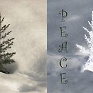 Two Little Trees Wish Joy and Peace by Judi FitzPatrick