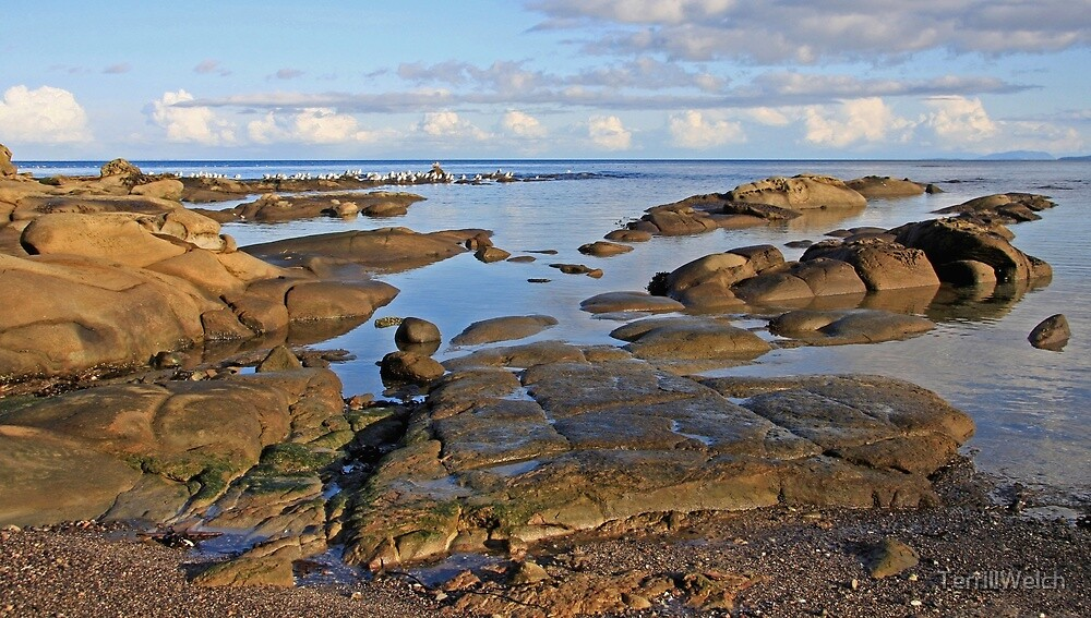 Early November afternoon by the sea  by TerrillWelch