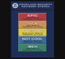 EPIC Homeland Security Terror Threat Levels by Paul Gitto