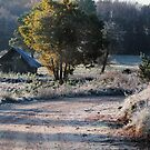 First frost and old barn by Antanas