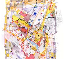 Capillarity and diffusion by Regina Valluzzi