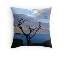 Hawk's Roost Throw Pillow