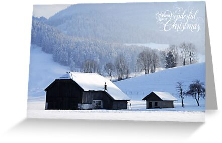 Wishing You a Wonderful Christmas by Sabine Jacobs