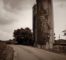 Farm Silo  by LynnRoebuck