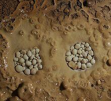 Cave Pearls by LynnRoebuck