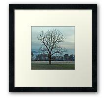 The Loner Framed Print