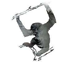 Gibbon Photographic Print