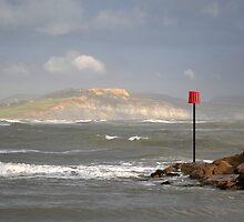 Golden Cap Charmouth Dorset by lynn carter