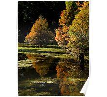 Autumnal Splendor ~ Part One Poster