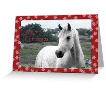 Connemara Pony Christmas Card -Type 2 Greeting Card