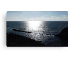 Shadows & Reflections Canvas Print