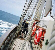 Sailing to Tasmania by tunna