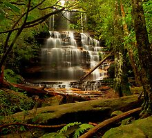 Junction Falls, NSW. by Andy Newman