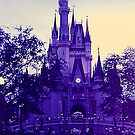 Magic Kingdom by Kate Eller