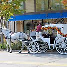 Carriage for Two by Jeri Garner