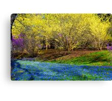 Spring Layers Canvas Print