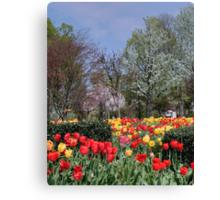 Brandon Park Spring Garden Canvas Print