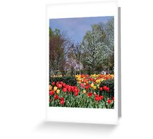 Brandon Park Spring Garden Greeting Card