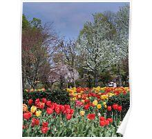 Brandon Park Spring Garden Poster