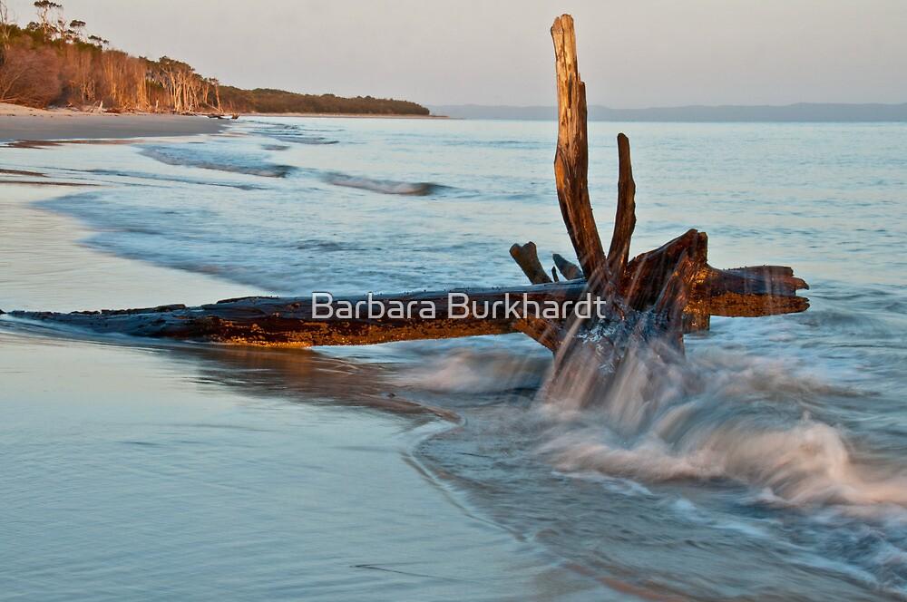 Red Beach at Dusk by Barbara Burkhardt