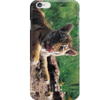 Lil' Tiger iPhone Case/Skin