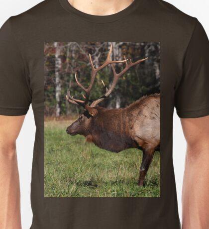 Royal Master T-Shirt