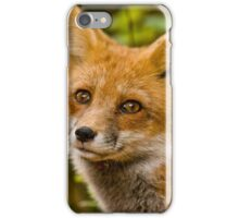 Fox Images iPhone Case/Skin