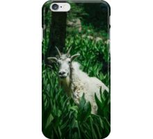 The curious mountain goat iPhone Case/Skin